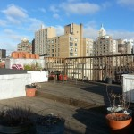 120 East 10th St Roof Deck