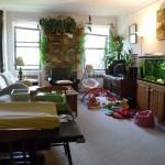 81 Ocean Parkway 2G Living Room